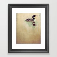 Common Loon Framed Art Print