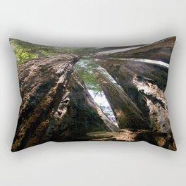 Up Close & Personal Rectangular Pillow