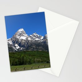 Fascinating Nature Stationery Cards
