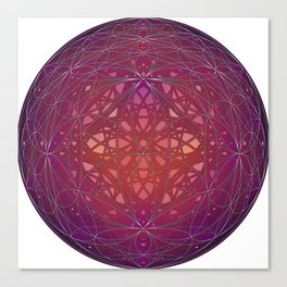 Geometry Flower Shift Canvas Print