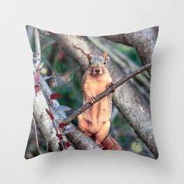 Stand Up Squirrel Throw Pillow