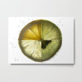 Fizzy Fruit Metal Print