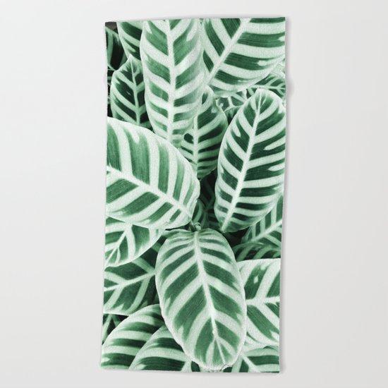 Wild leaf Beach Towel