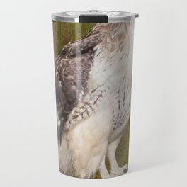 Red Tailed Hawk perched on a branch in the woodlands Travel Mug