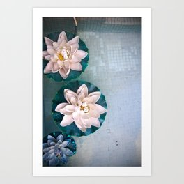 Other Flowers on the Pond Art Print