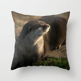 Otter Looking Into The Sunshine Throw Pillow