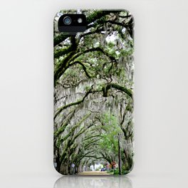 The Fountain of Youth 450th Year Celebration iPhone Case