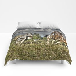 Cowboy Country Comforters