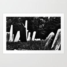 Womb To Tomb Art Print