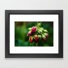 FLOWERS #4 Framed Art Print