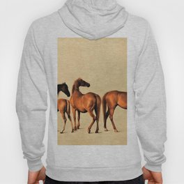 Classical Master Piece Circa 1762  Rockingham Mares and Foals by George Stubbs Hoody