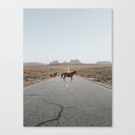 Valley Horses Canvas Print