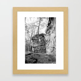 Perched Atop Framed Art Print