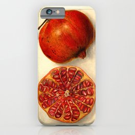 Vintage Botanical Pomegranate iPhone Case