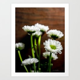 Floral Untitled .18 Art Print