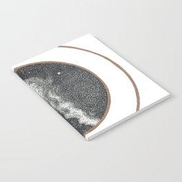 Altair & Vega Notebook