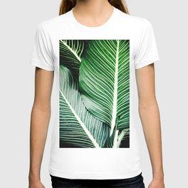 Palm-Tree Breeze T-shirt