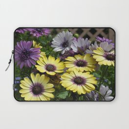 Yellow and Purple African Daisies Laptop Sleeve