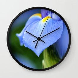 Dwarf Iris Wall Clock