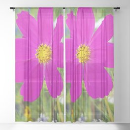 Flowers Go Wild in Wimbledon 5 - Cosmos the bold Sheer Curtain