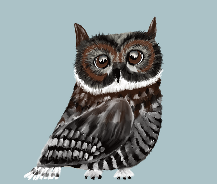Adorable Owl In Blue Metal Travel Mug