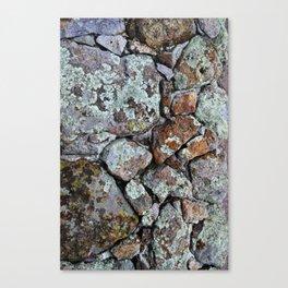 Mineral Rocks Canvas Print