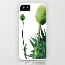 Grrr et Grrr iPhone Case