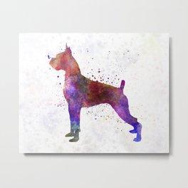 Boxer in watercolor Metal Print