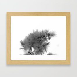 The dreamy taraxacum mongolicum Framed Art Print