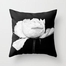 White Peony Black Background Throw Pillow