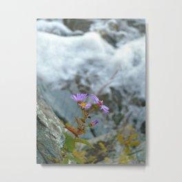 Pop up flower Metal Print