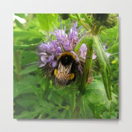 Bee Friends #2 Metal Print