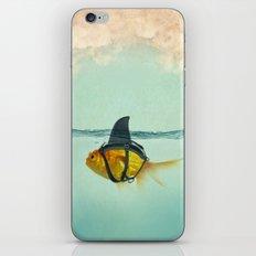 Brilliant DISGUISE iPhone & iPod Skin
