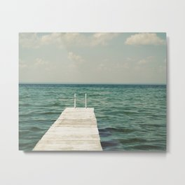 Mint Lake Escape  Metal Print