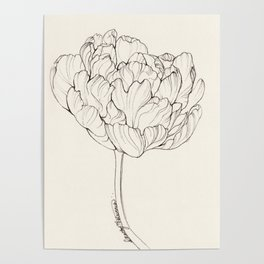 Diamond Tulip Poster
