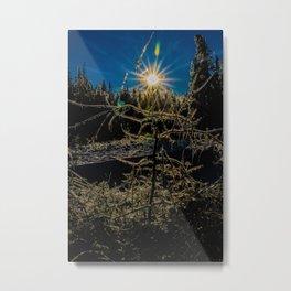 The sun melting ice off trees Metal Print