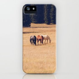 Montana Collection - Horses on the Ranch iPhone Case