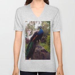 Peacock Rock Unisex V-Neck