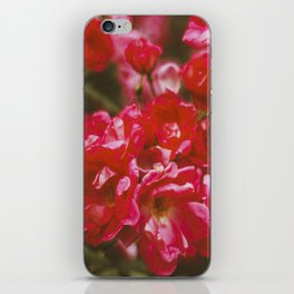 love. iPhone Skin