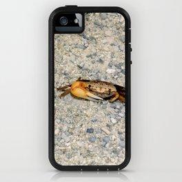 Crab No.4 iPhone Case