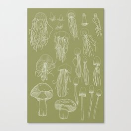 Transitioning Mushrooms (Olive Green) Canvas Print