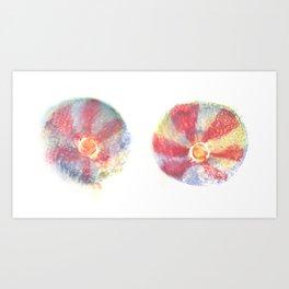Mags' Peppermints Art Print