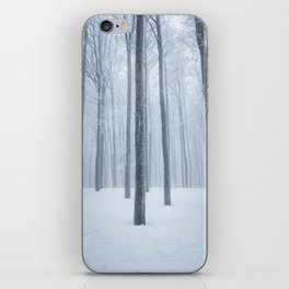 Foggy frozen winter forest iPhone Skin