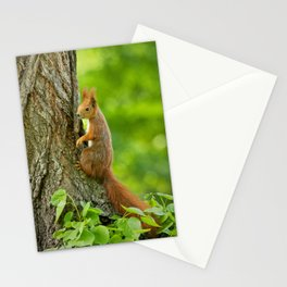 Cute is my middle name Stationery Cards