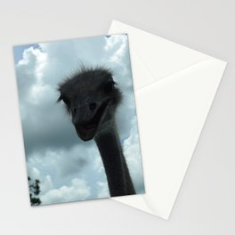 Ostrich Stationery Cards