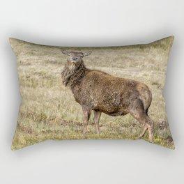 Wild Red deer in Scotland Rectangular Pillow