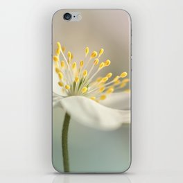 Loveable Wood Anemone... iPhone Skin