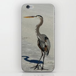 Living On A Beach iPhone Skin