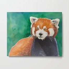 Red panda watercolor portrait Metal Print