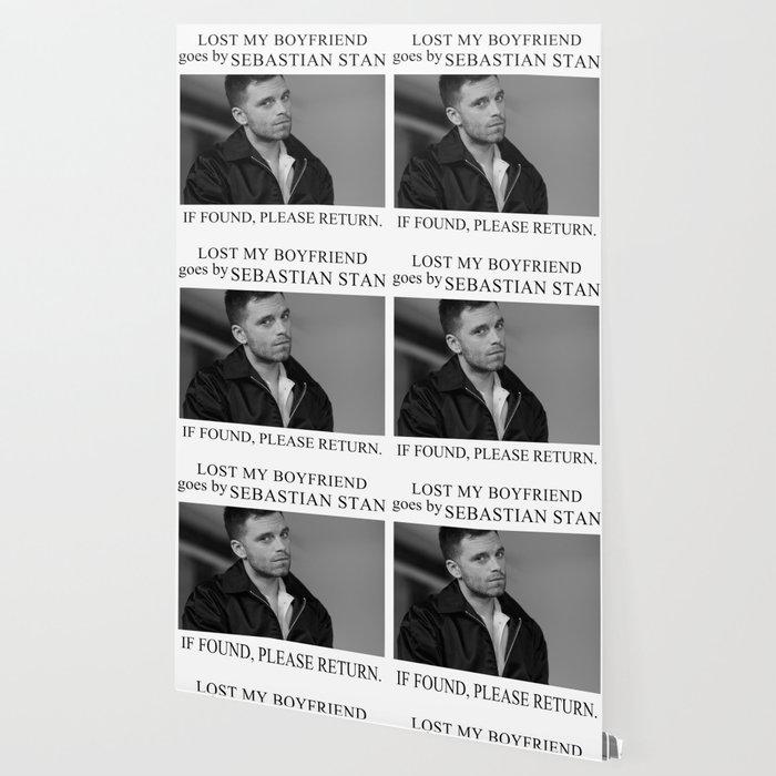 Lost my boyfriend Sebastian Stan Wallpaper
